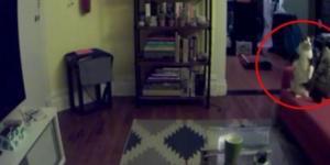 Foto AdamEllis in seinem Apartment