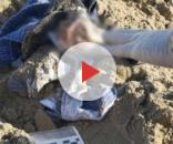 La donna tedesca di 57 anni racconta lo stupro subito