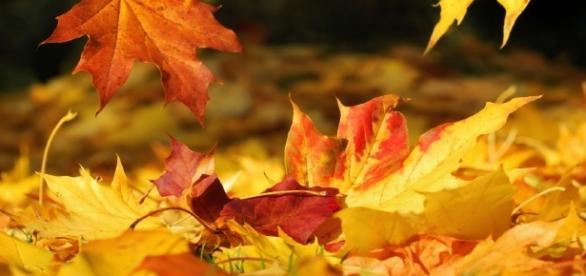 Estate Addio! Con L'Equinozio arriva l'autunno