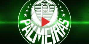 Palmeiras está em busca de um novo goleiro.
