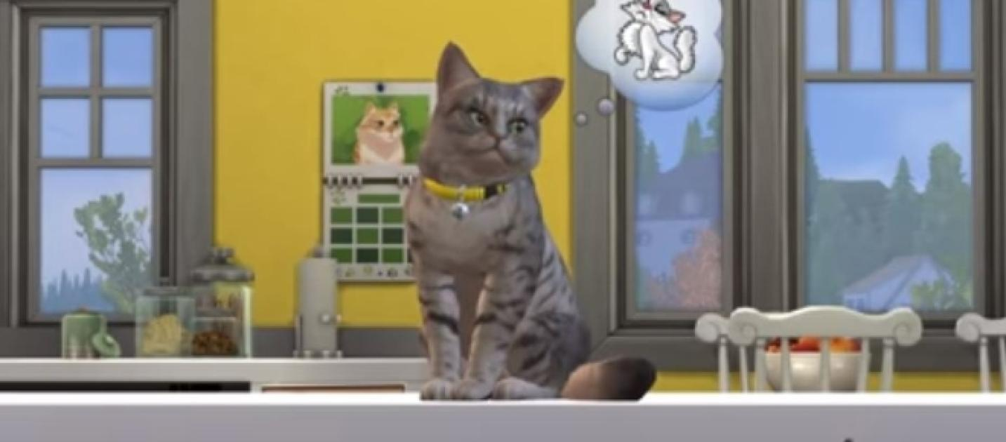 How Much Is The Sims  Cats And Dogs