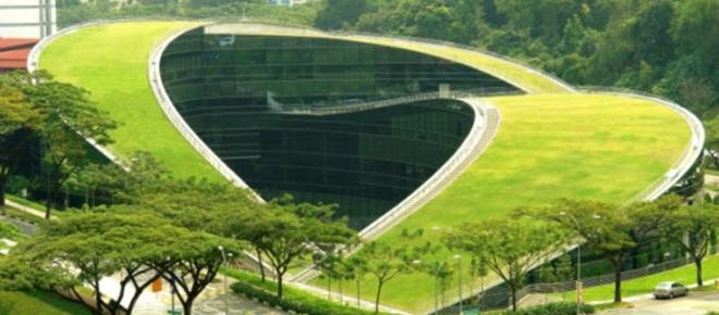 Os benefícios dos telhados verdes para nossa saúde