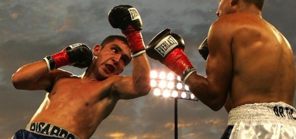 A boxing match in progress.Photo credit https://pixabay.com