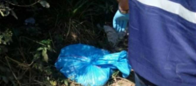 Corpos esquartejados de duas crianças são encontrados no Rio Grande do Sul