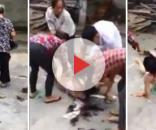 Jovem é agredida no meio da rua (Fotos: Captura de vídeo)