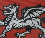 The original White Dragon flag of England - Dave Horne-Flickr