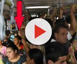 Famosos já foram vistos em ônibus