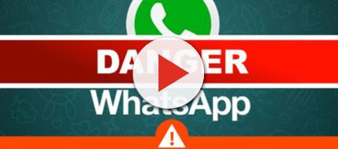 Android Alert: Virus Affects WhatsApp Download! - Brandsynario - brandsynario.com