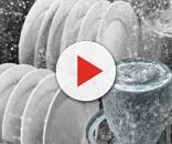 Funghi e batteri pericolosi nella lavastoviglie: come pulire