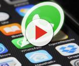 Um dos aplicativos mais utilizados do mundo tem nova atualização importante