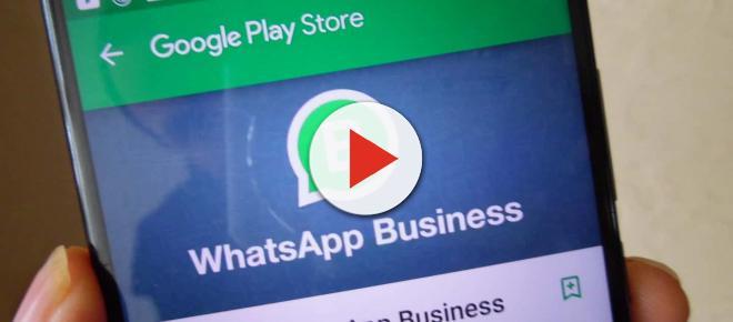 WhatsApp Business finalmente sul Play Store Android