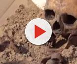 Secondo una archeologa australiana nel medioevo la longevità non era molto diversa da quella odierna.