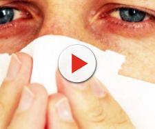 Alergias: De los wearables a los transgénicos: tecnología para ... - elconfidencial.com