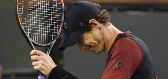Andy Murray could miss the Australia open