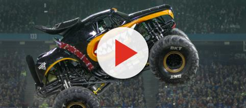 Monster Mutt Rottweiler. - [Image Credit: Feld Entertainment. Image via Feld Entertainment. Used with permission]