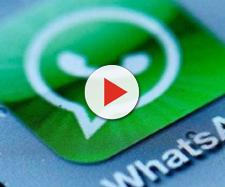 WhatsApp di nuovo a pagamento? Ecco la verità