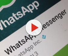 WhatsApp, non c'è pace per gli utenti ecco l'ultima truffa!