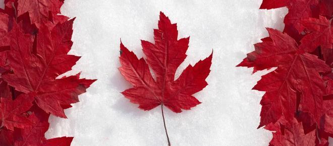 Toronto possui mais de 24 mil vagas abertas