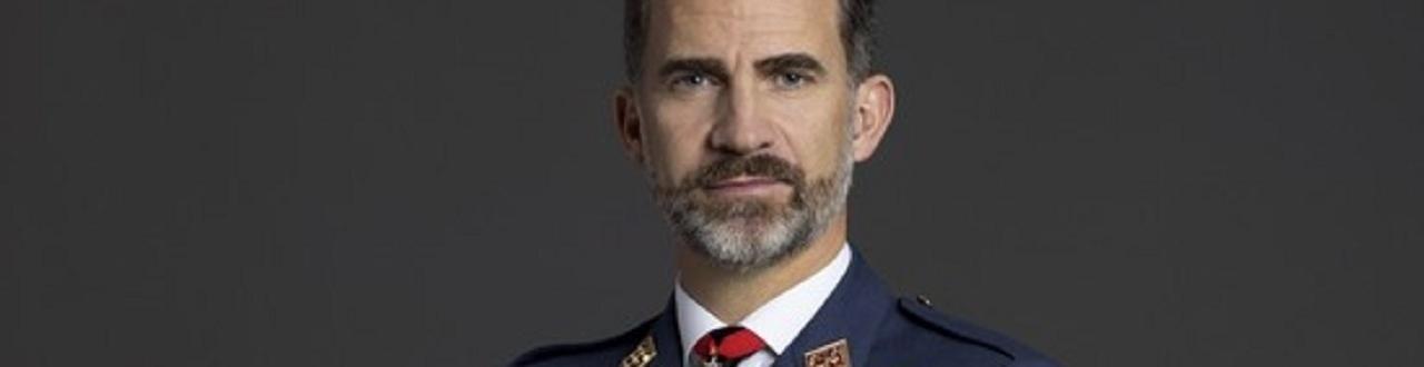 El Rey Felipe VI es el actual jefe de Estado y representante del Gobierno Español