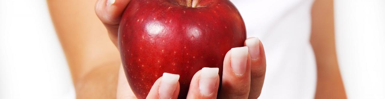 Canal dedicado a conseguir todos tus propósitos con los alimentos. Pierde peso para siempre y de manera sana
