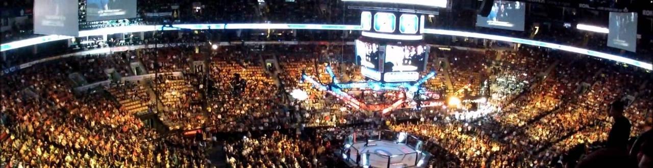 Aqui você confere notícias atualizadas a todo o momento sobre o UFC, maior evento de artes marciais mistas do mundo.