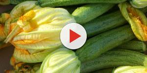 Zucca e zucchine: cosa sono e come sceglierle