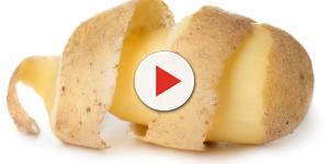 Patata: cos'è e come sceglierla