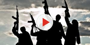 Vídeo: Terrorismo