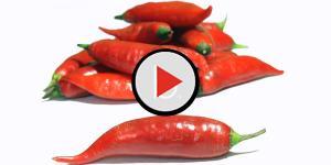 Assista: Mulher coloca pimenta-malagueta na genitália da amante do esposo como
