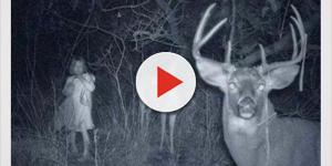 7 fotos assustadoras tiradas por caçadores que irão te dar pesadelos