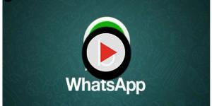 Video: WhatsApp: sta arrivando uno degli aggiornamenti più utili in assoluto
