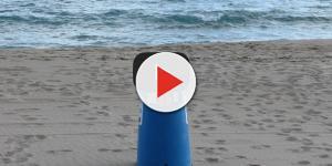 Basura oceánica: un mal que podría matarnos