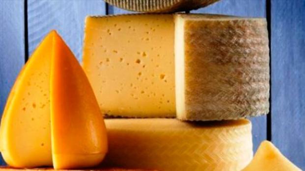Los quesos como fuentes nutricionales