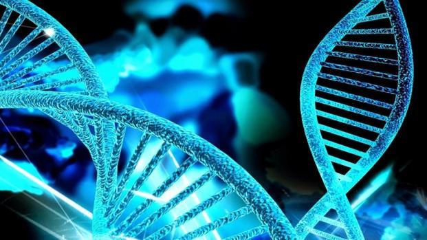 Bizarra anomalia genética faz 'meninas virarem homens'