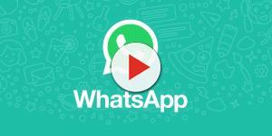 Assista: Gosta de enviar áudios pelo WhatsApp? Então, confira esta novidade