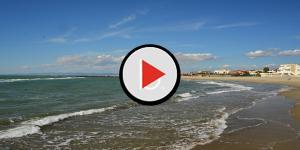 Video: Rapporto completo in spiaggia davanti ai bambini la reazione dei bagnanti