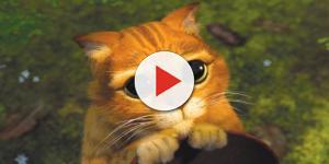 Esses 10 animais parecem ter saído de animações famosas