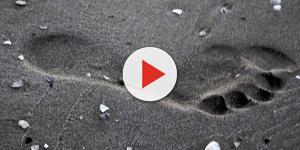 Video: Scozia, bimba calpesta urina di cane: rischia l'amputazione dell'alluce