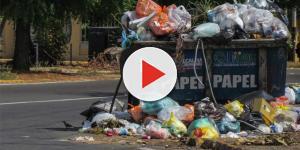 Brindan capacitación en materia ambiental en Solidaridad