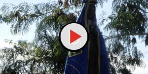 Assista: Após evangélico zombar de Nossa Senhora, padre Zezinho responde
