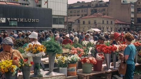 Assalto omicida in Finlandia: due morti e otto feriti