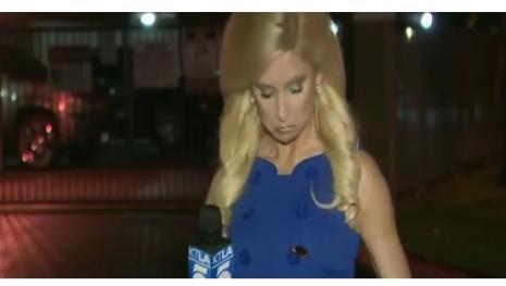 Barata pousa em vestido de repórter ao vivo em jornal dos Estados Unidos