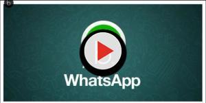 Video: WhatsApp: l'ultimo aggiornamento è una dichiarazione di guerra a Snapchat