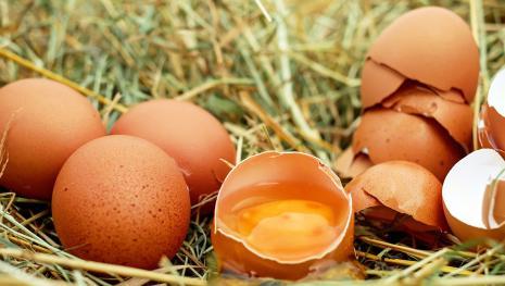 Uova al fipronil: aumentano i casi