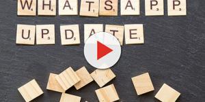 Video: Whatsapp si colora e ci localizza in diretta: addio alla privacy?