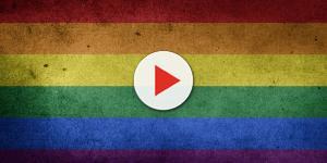 Mara Maravilha diz que homossexual não procria e o pior acontece