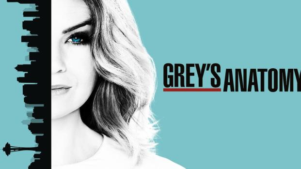 13ª temporada de 'Grey's Anatomy' chega ao Netflix