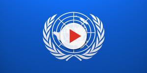 Conheça a ONU - Organização das Nações Unidas