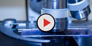 Assista: Fim do câncer? Nanomáquinas matam células doentes em poucos minutos