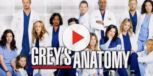 'Grey's Anatomy' Season 14 cast update: [spoiler] won't return